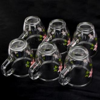 binh 6 coc glasslock